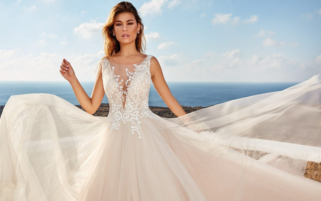 Live in a Dream with Our Eddy K 2020 Dreams Collection Trunk Show